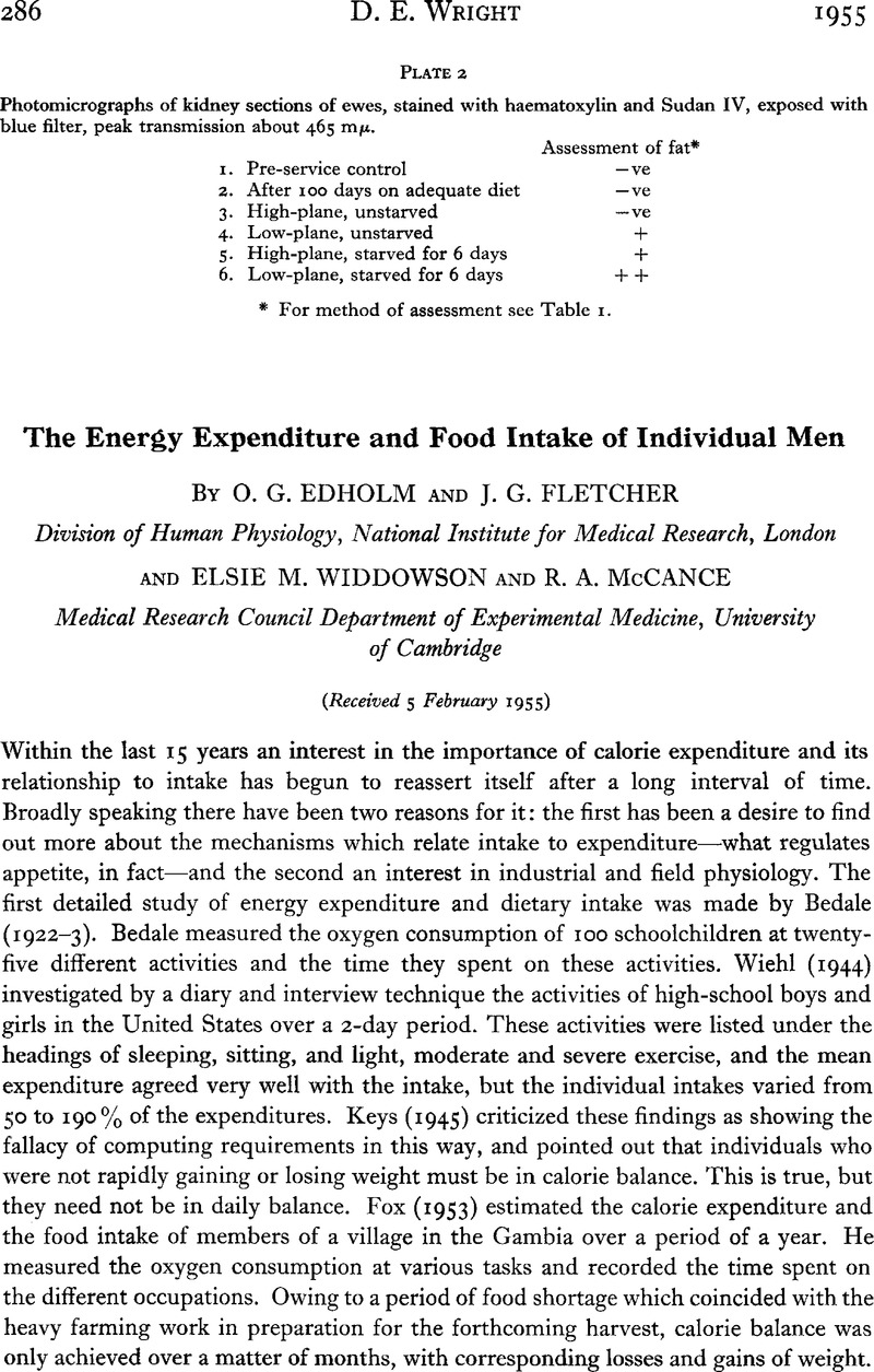 Mccance And Widdowson Spreadsheet With Regard To The Energy Expenditure And Food Intake Of Individual Men  British