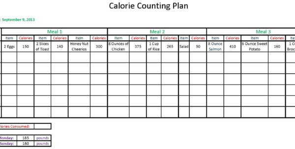 Meal Tracker Spreadsheet Inside Index Of /cdn/23/2013/190