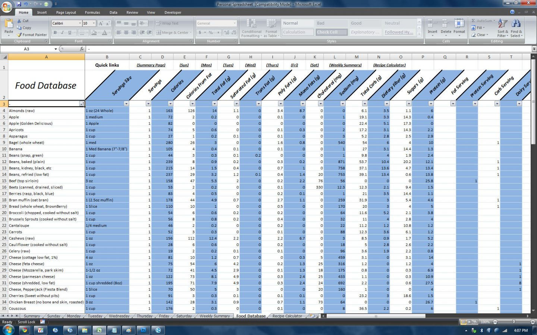 Meal Tracker Spreadsheet Pertaining To Diet Excel Spreadsheet Zone Sheet Atkins Paleoownload Log Best