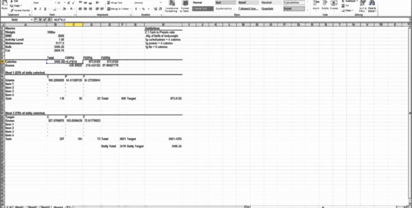 Meal Tracker Spreadsheet With Regard To Hcg Diet Tracker Sheet Best Of Meal Tracker Spreadsheet