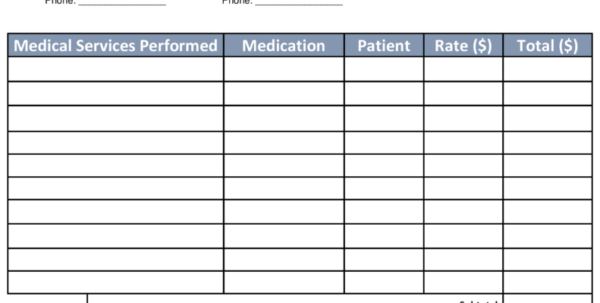Medical Billing Spreadsheet For Medical Billing Statement Template Free Download Sample Bill Pdf And