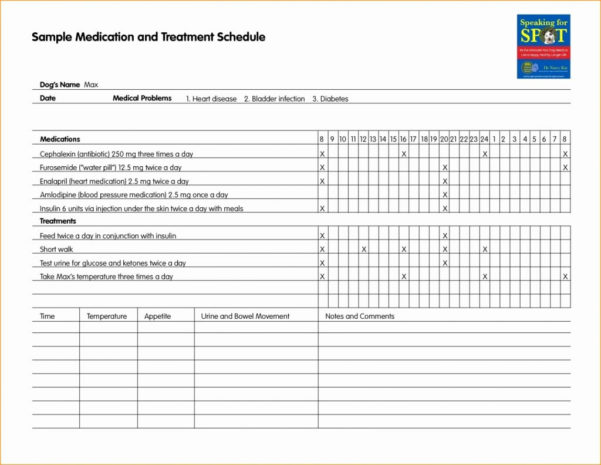 Medication Schedule Spreadsheet Pertaining To Diabetes Spreadsheet Excel With 2015 Plus Gestational Together As