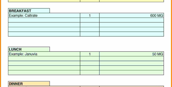 Medication Spreadsheet Organizer With Regard To 910 Printable Medication List  Artresumes Medication Spreadsheet Organizer Spreadsheet Download