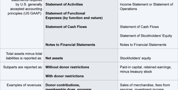 Membership Dues Spreadsheet Within Nonprofit Accounting Explanation  Accountingcoach