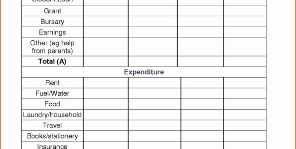 Microsoft Budget Spreadsheet Pertaining To Travel Baseball Team Budget Spreadsheet  Readleaf