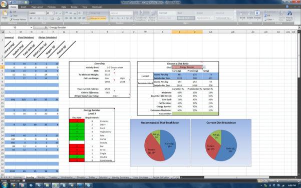 Nutrition Spreadsheet Excel Inside P90X Worksheets Chest And Back  Homebiz4U2Profit