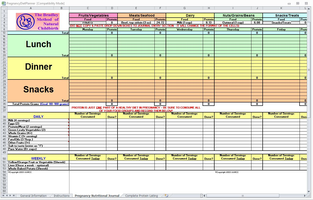 Nutrition Spreadsheet Template In Diet Excel Spreadsheet Pregnancy Planner Tracker Template Maggi