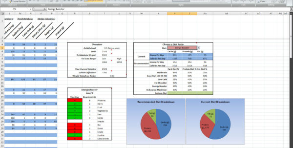 Nutrition Spreadsheet Template Within P90X Spreadsheet Excel  Homebiz4U2Profit