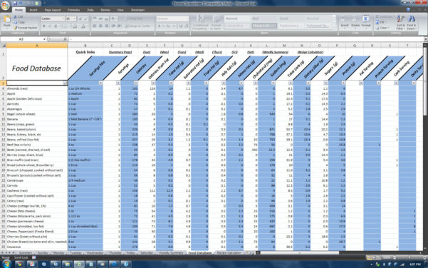Nutrition Spreadsheet With Regard To P90X Spreadsheet  Homebiz4U2Profit