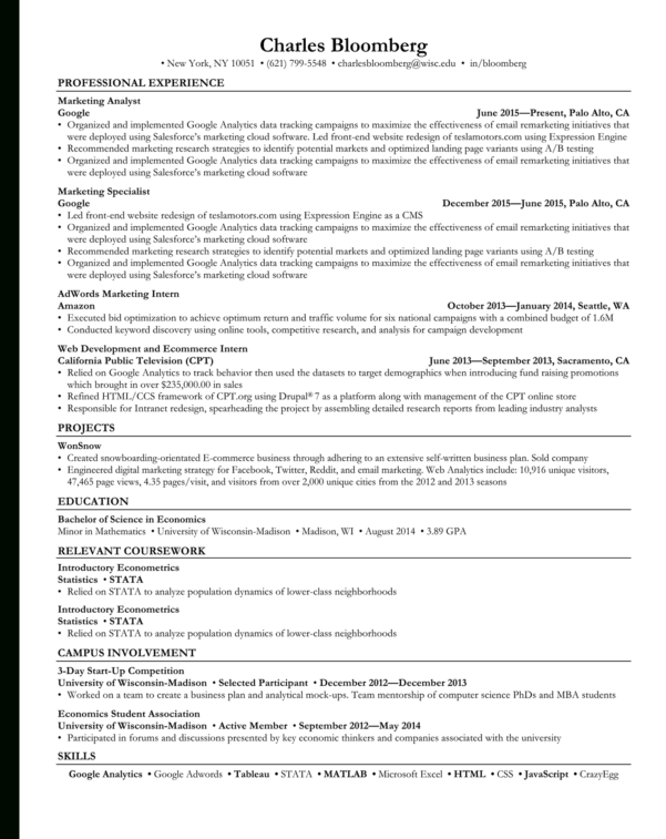 Open To Buy Spreadsheet Example For Rezi  Ats Optimized Resume Templates