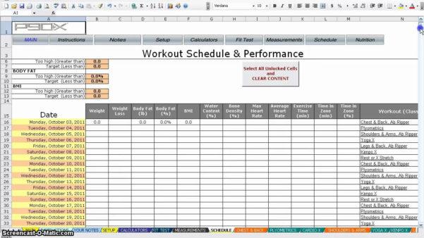 P90X Excel Spreadsheet For P90X Insanity Hybrid Excel Spreadsheet  Homebiz4U2Profit