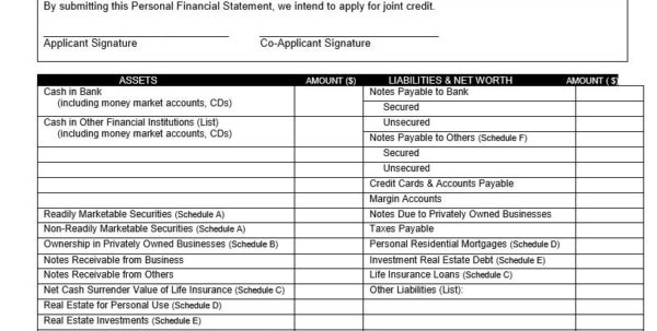 Personal Financial Statement Spreadsheet For 40  Personal Financial Statement Templates  Forms  Template Lab