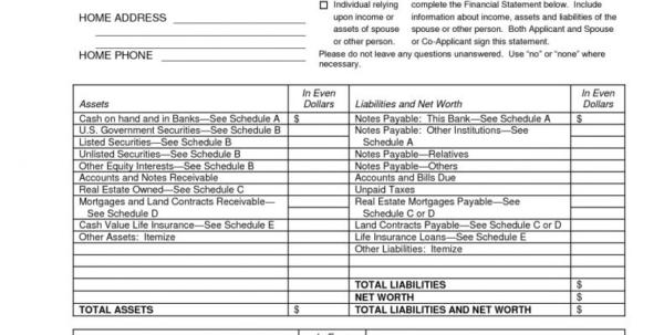 Personal Financial Statement Spreadsheet In Best Of Personal Financial Statement Template Excel Wwwpantry Blank