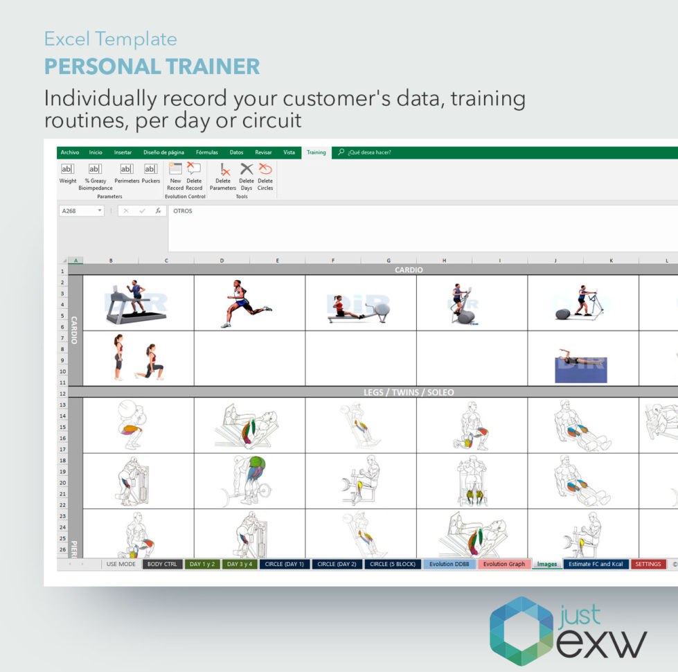 Personal Training Client Excel Spreadsheet With Regard To Personal Trainer Template  Excel Training Plan Model  Workout Chart