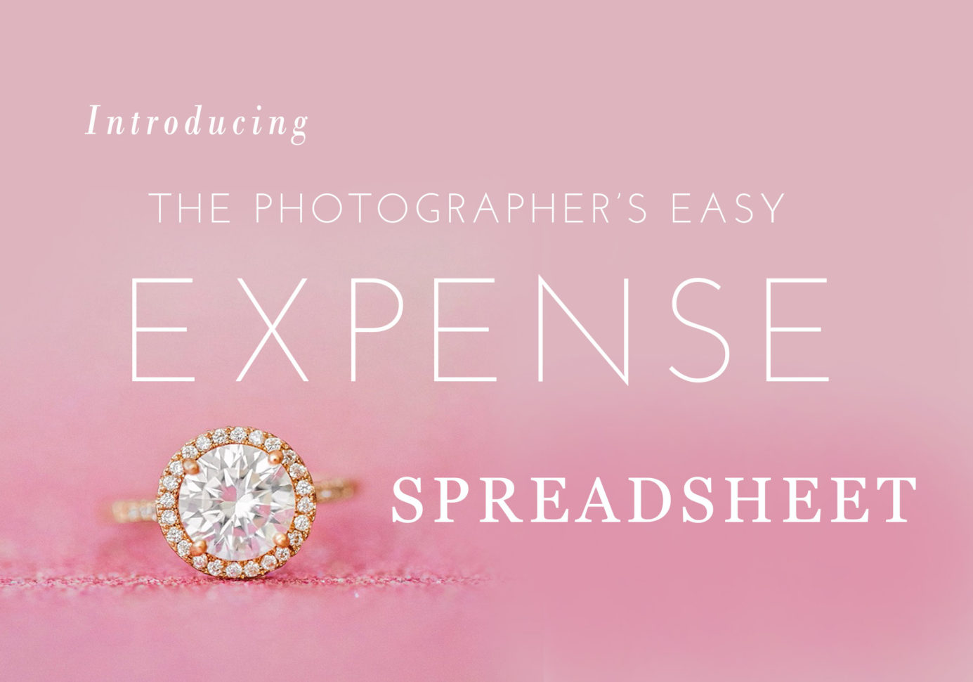 Photographer Expenses Spreadsheet With Expense And Income Spreadsheet For Photographers  Jessica Roberts