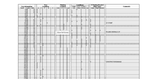Pipe Tally Spreadsheet Within Mobile Community Tree Inventory System  Ppt Download