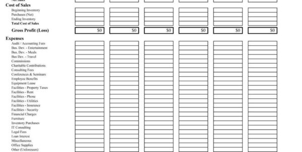 P&l Spreadsheet Within 35 Profit And Loss Statement Templates Forms Free Template 09 Pl