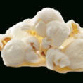 Popcorn Sales Tracking Spreadsheet In Resources  Trails End