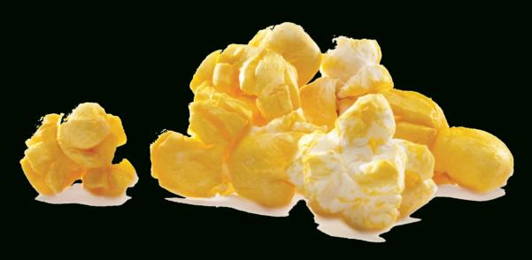 Popcorn Sales Tracking Spreadsheet Regarding Resources  Trails End