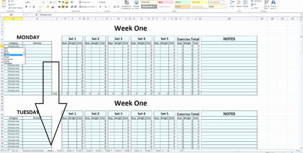 Powerlifting Program Spreadsheet With Juggernaut Spreadsheet Elegant 20 Elegant Powerlifting Program