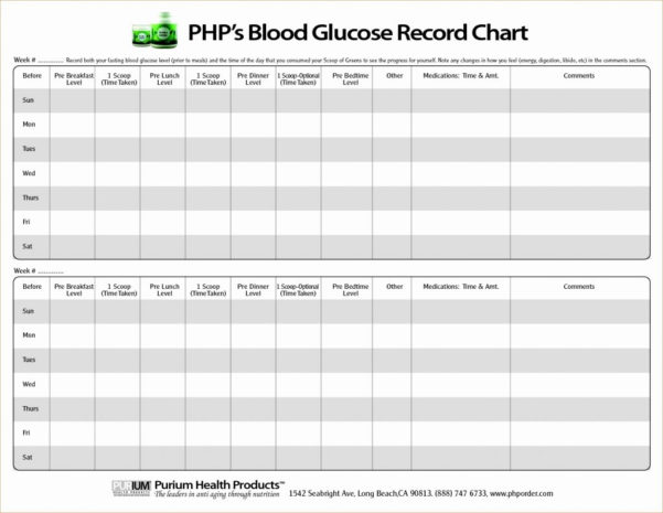Printable Spreadsheet Pdf Intended For Blood Sugar Spreadsheet Glucose Log Printable Sheets Pdf Book Sample