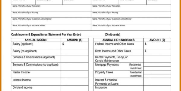 Pro Forma Spreadsheet Template For Income Statement Creator Pro Forma Spreadsheet Template