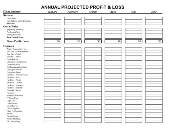 Profit And Loss Spreadsheet Small Business With 019 Business Profit And Loss Spreadsheet As Well Projection Template