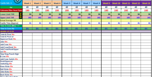 Progress Monitoring Excel Spreadsheet Inside P90X2 « Excel Workout Tools