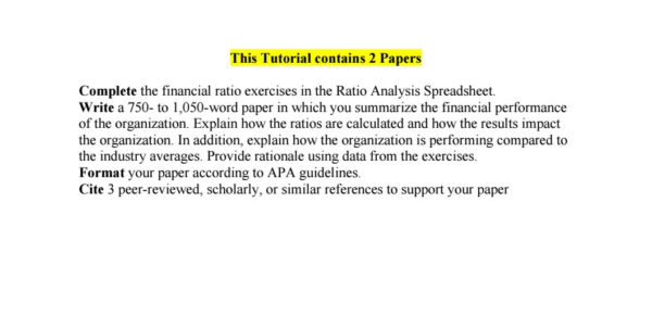 Ratio Analysis Spreadsheet Hcs 385 For Hcs 385 Assignment Financial Performance Evaluation 2 Papers