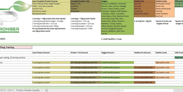 Renaissance Diet Spreadsheet Free With Regard To Renaissance Diet Auto Templates Download Free 18 Rp Strength
