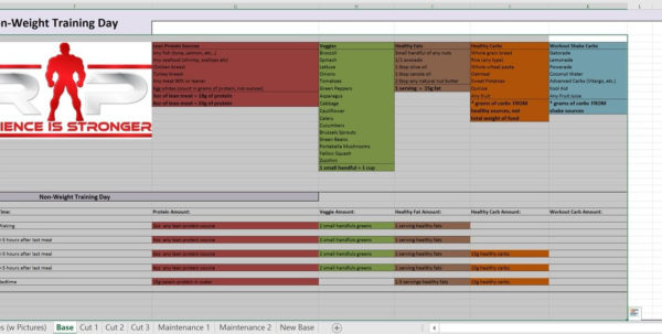 Renaissance Diet Spreadsheet With Regard To Rp Templates Free – Templatesource