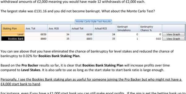 Retirement Staking Plan Spreadsheet For Tsm Meets The Pro Backer  Pdf