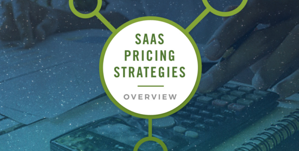 Saas Pricing Model Spreadsheet With Pricing Your Startup: An Overview Of Saas Pricing Strategies