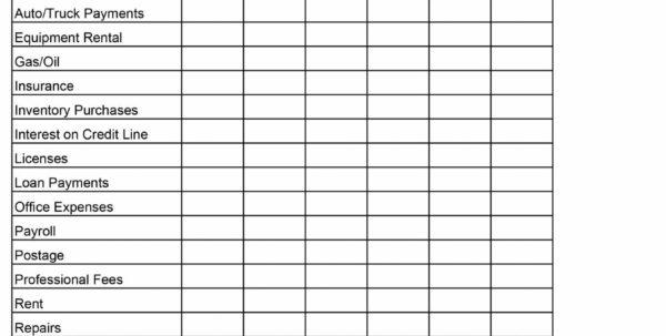 Simple Cash Flow Spreadsheet Inside Beaufiful Cash Flow Excel Template Photos  Cash Flow Statement