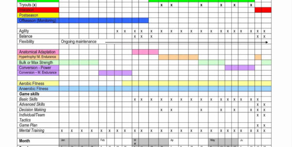 Skills Matrix Spreadsheet With Regard To Skills Matrix Spreadsheet Employee Trainingate Excel Unique Skills Matrix Spreadsheet Spreadsheet Download