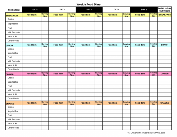 Slimming World Food Diary Spreadsheet Throughout 003 Template Ideas Food Diary ~ Ulyssesroom