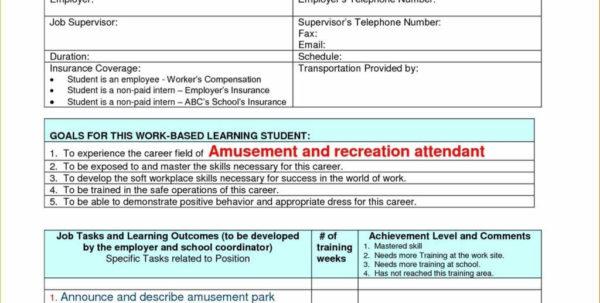 Spreadsheet Activities For High School Students With Spreadsheet Lesson Plans For High School Spreadsheet Softwar