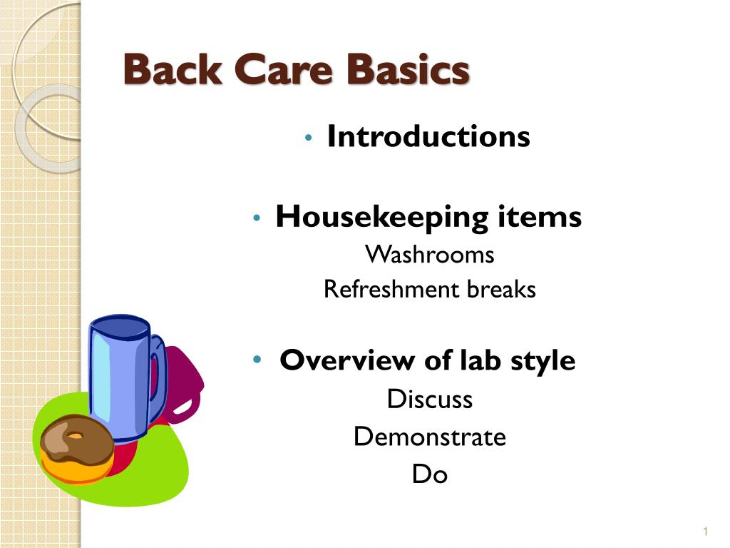 Spreadsheet Basics Ppt Throughout Ppt  Back Care Basics Powerpoint Presentation  Id:1961673