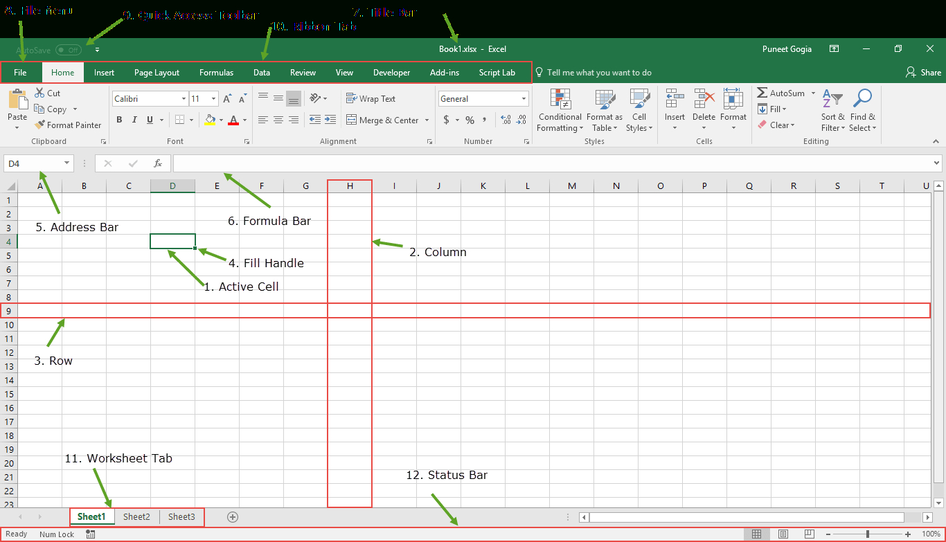Spreadsheet Components For Introduction To Microsoft Excel  Basics Knowledge   Components