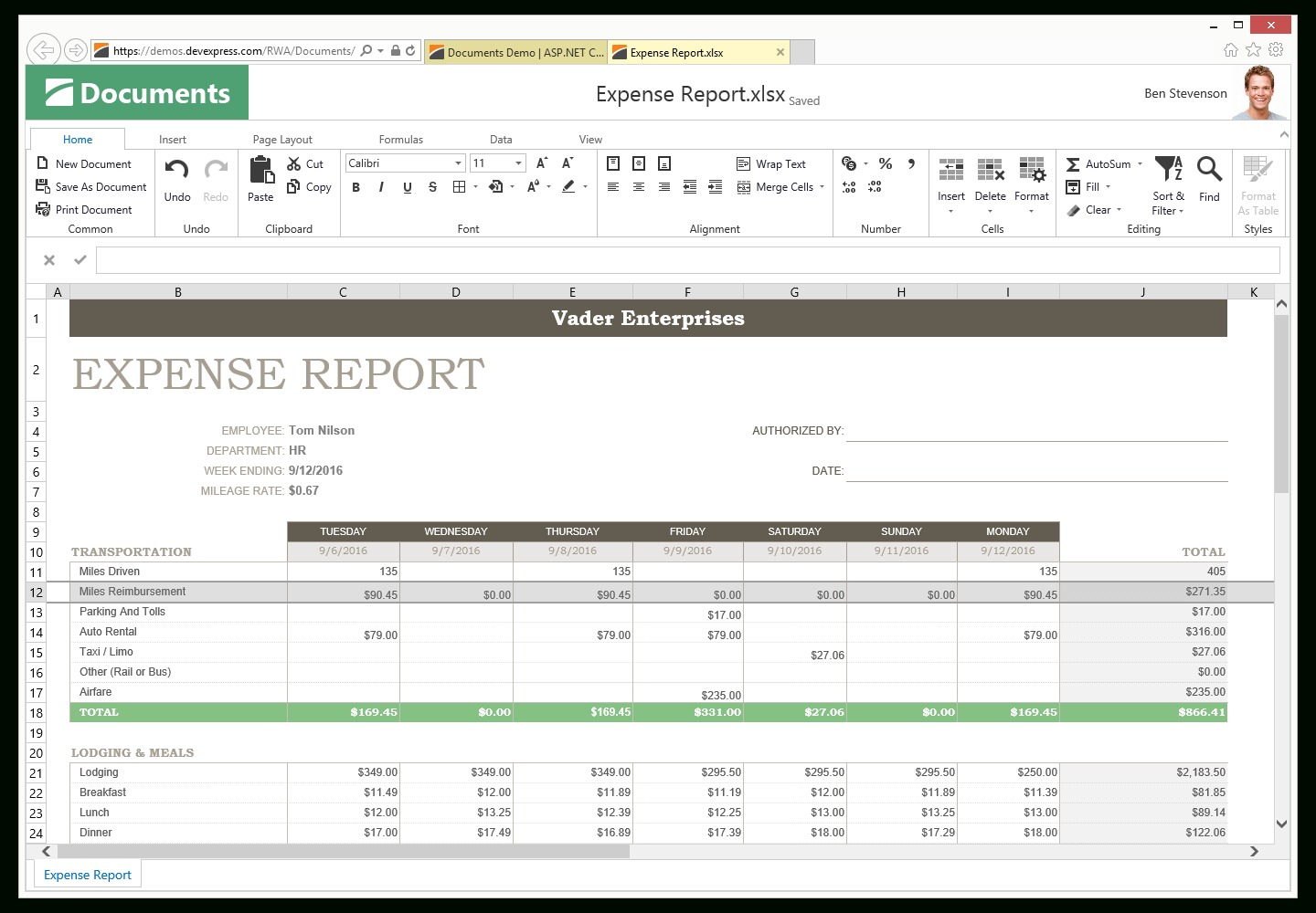 Spreadsheet Controls For Asp Spreadsheet  Excel Inspired Spreadsheet Control  Devexpress
