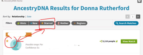 Spreadsheet For Ancestry Dna Matches For Searching, Sorting And Filtering Your Dna Matches – Donna Rutherford