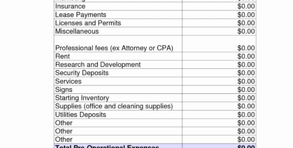 Spreadsheet For Cleaning Business Intended For 010 Template Ideas Cleaning Business Start Up Cost Oxynuxorg Startup