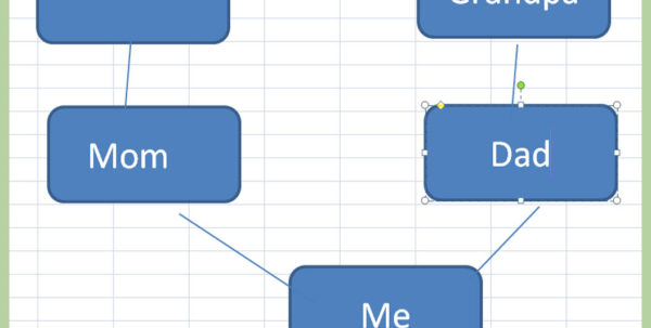 Spreadsheet For Family Tree With Regard To 3 Ways To Make A Family Tree On Excel  Wikihow