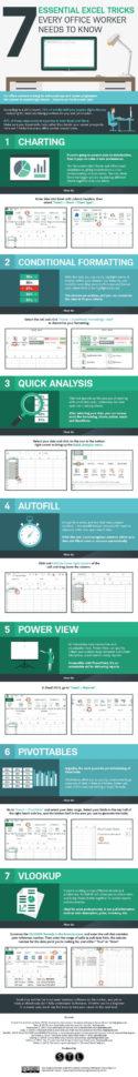 Spreadsheet Guru Within 7 Tips To Become A Microsoft Excel Spreadsheet Guru [Infographic