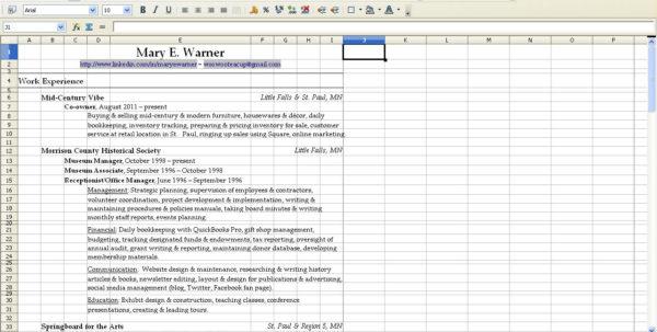 Spreadsheet Resume Intended For Resume Spreadsheet  Aljererlotgd Spreadsheet Resume Google Spreadsheet