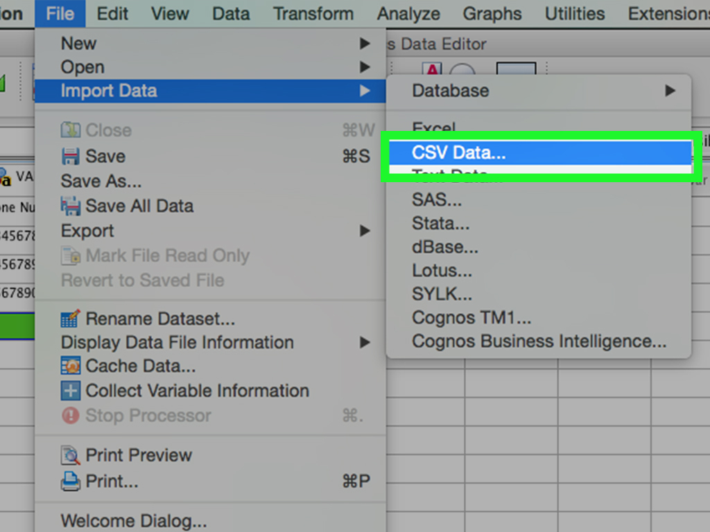 Spss Spreadsheet Throughout How To Enter Data In Spss: 8 Steps With Pictures  Wikihow