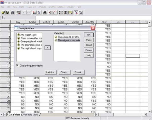 Spss Spreadsheet With Spss  Download