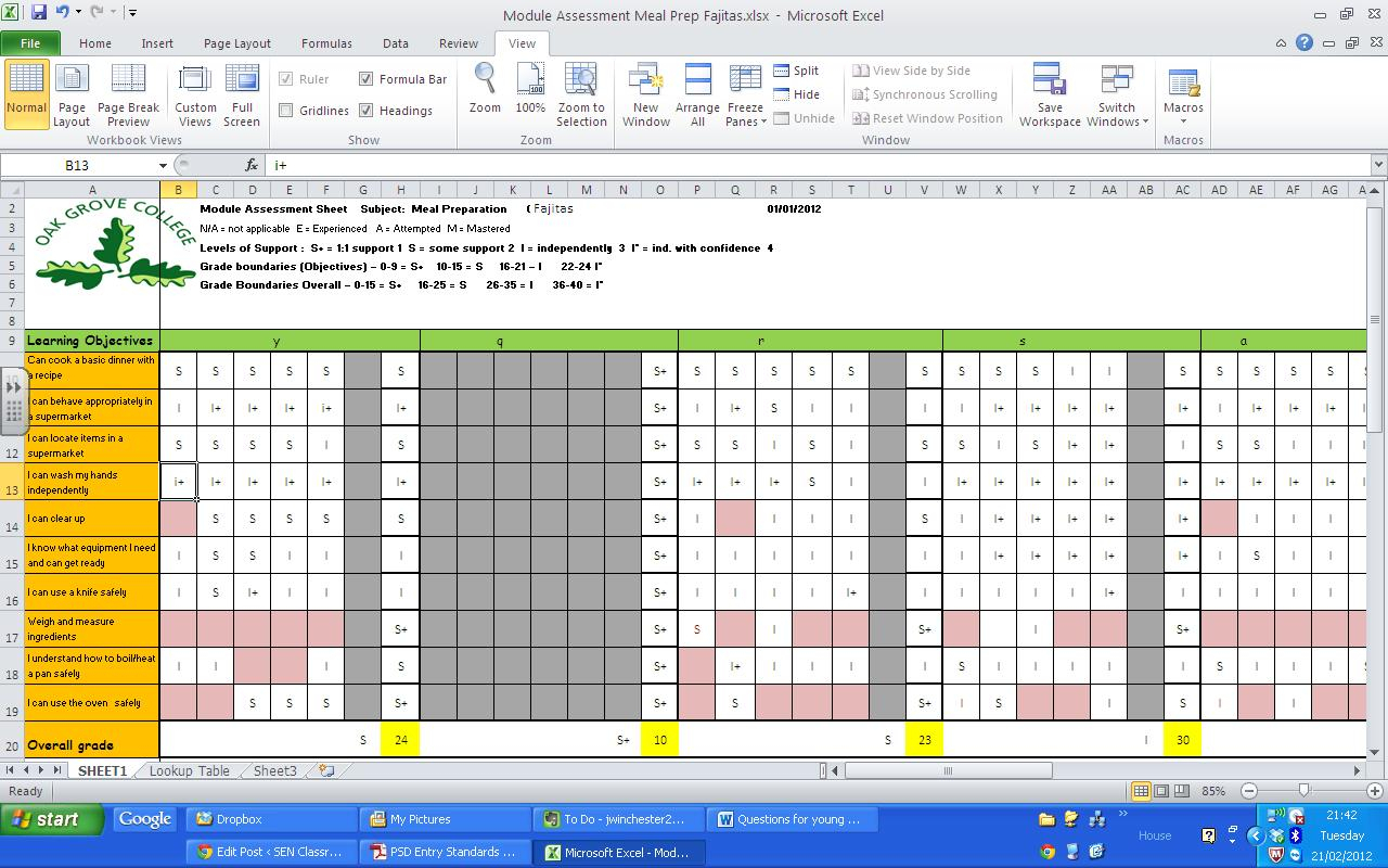 Tracking Pupil Progress Spreadsheet For Life Skills Curriculum  Sen Classroom
