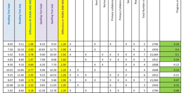 Tracking Pupil Progress Spreadsheet Within Year 7 Catch Up Expenditure
