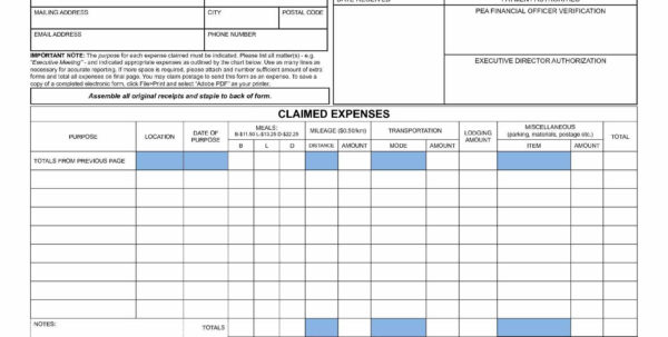 Travel Expense Spreadsheet For Mileage Spreadsheet Template Also Business Expense Form Elegant
